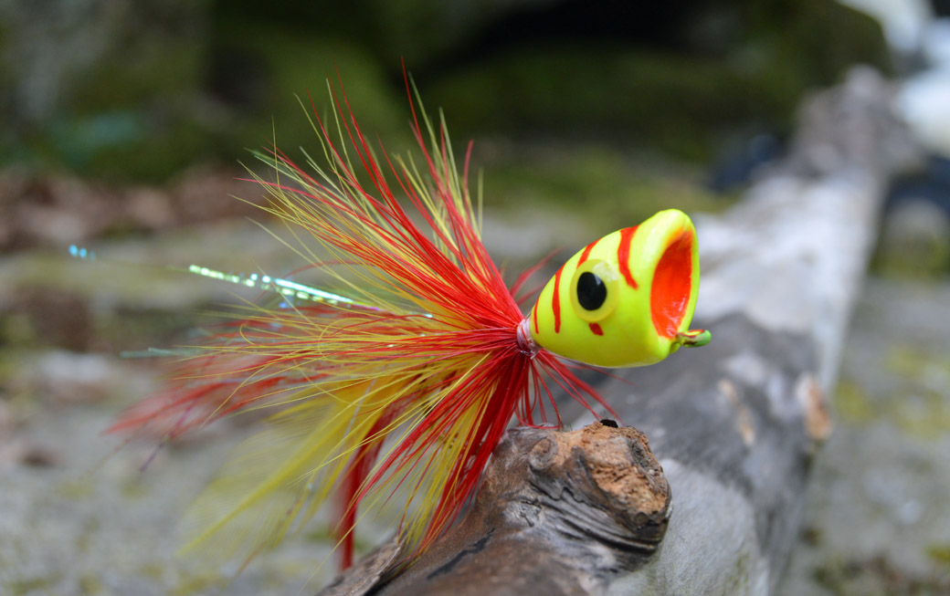 Fly fishing for pike crazy hooks by matt pickup for Fishing poppers for bass