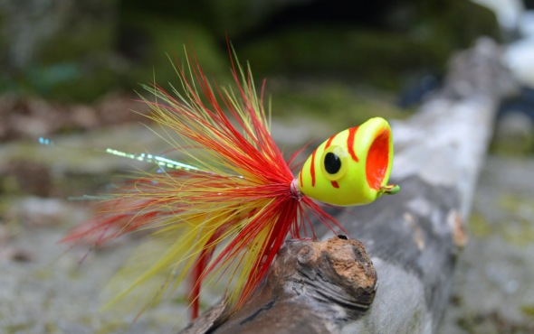 Bass poppers crazy hooks by matt pickup for Fishing poppers for bass
